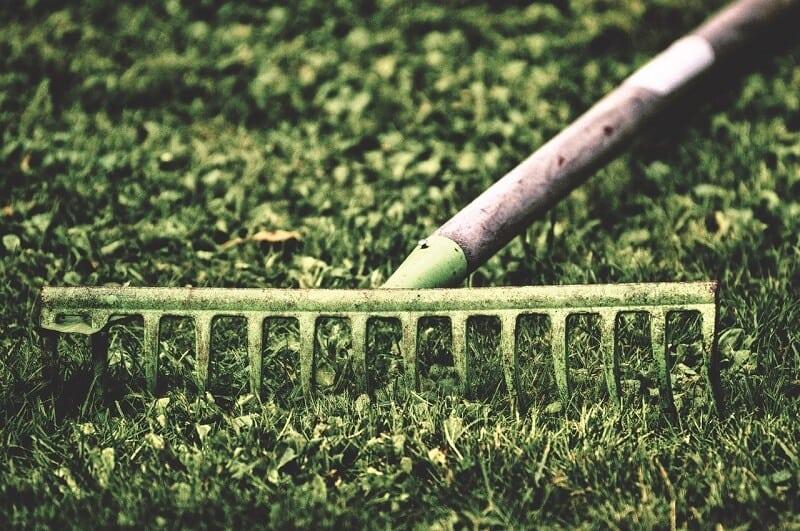 Kerti munkák februárban - Birkózz meg a tavasz eleji kerti munkákkal könnyedén