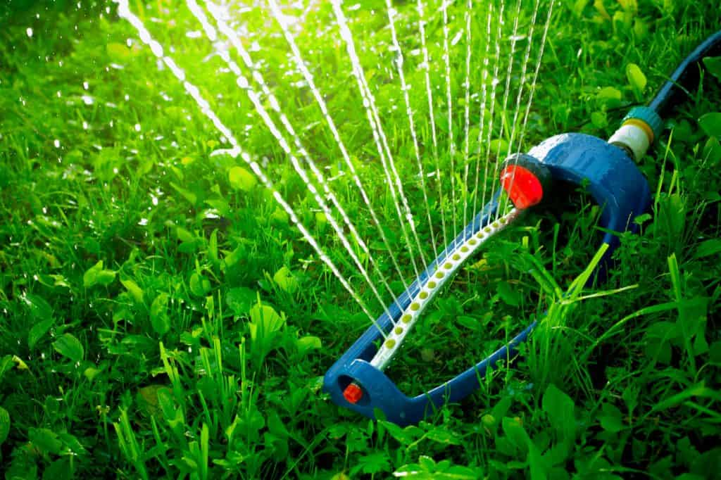 Lawn sprinkler spaying water over green grass